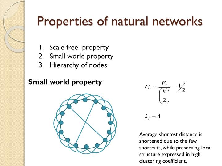 Properties of natural networks