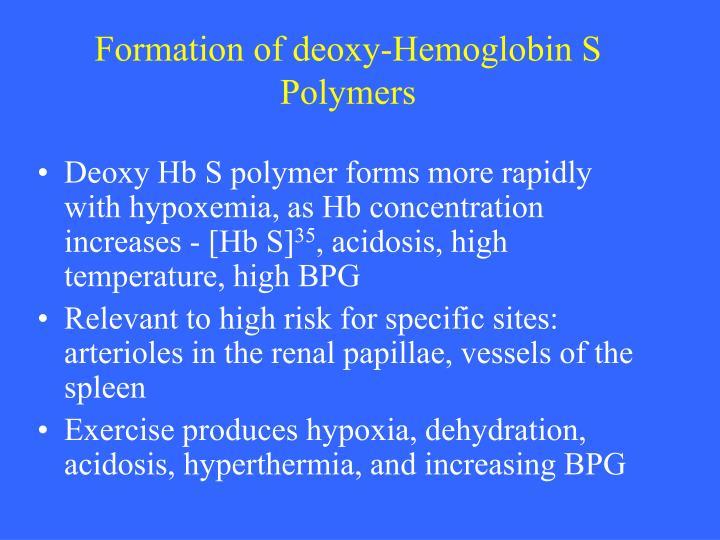 Formation of deoxy-Hemoglobin S Polymers