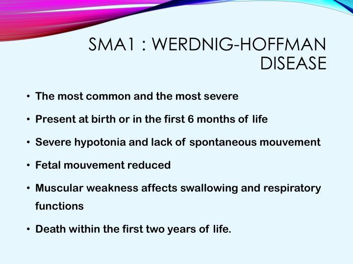 SMA1 :