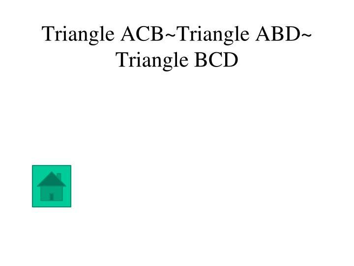 Triangle ACB~Triangle ABD~ Triangle BCD