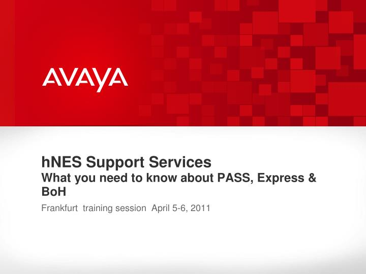 hNES Support Services