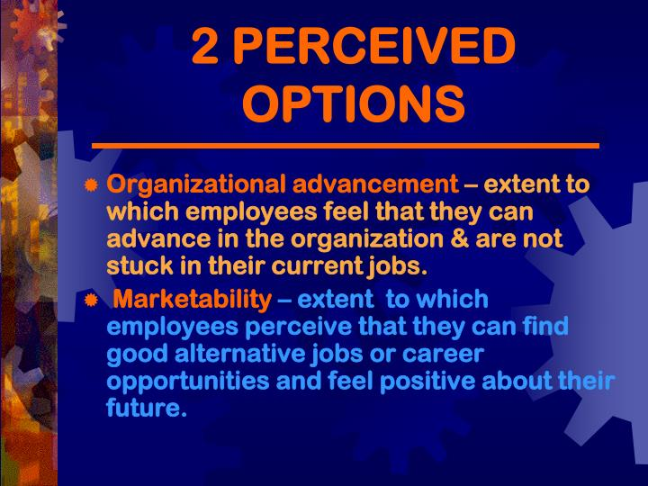 2 PERCEIVED OPTIONS