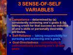 3 sense of self variables1