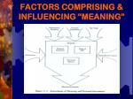 factors comprising influencing meaning