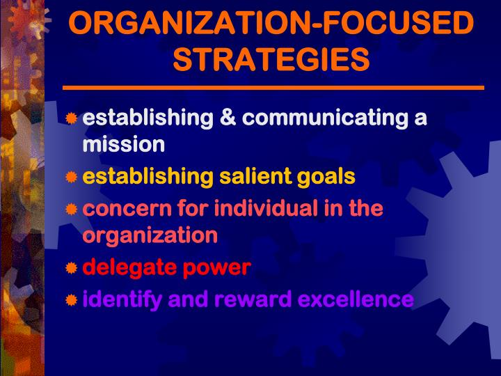 ORGANIZATION-FOCUSED STRATEGIES