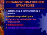 organization focused strategies