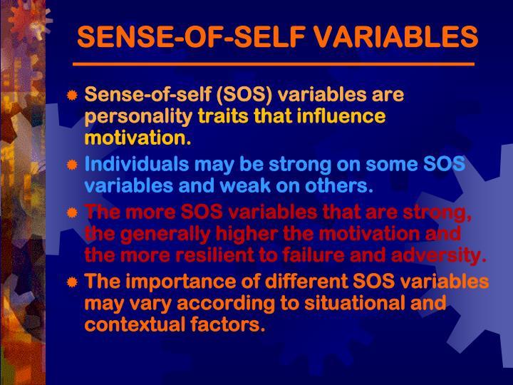 SENSE-OF-SELF VARIABLES