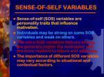 sense of self variables
