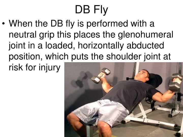 DB Fly