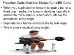preacher curls machine biceps curls bb curls