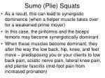 sumo plie squats1