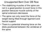 unsupported bent over db row1