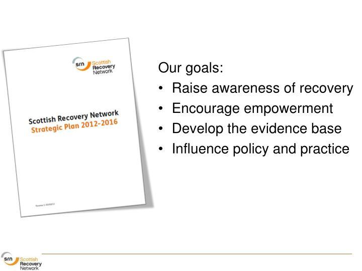 SRN Strategic Plan 2012-16
