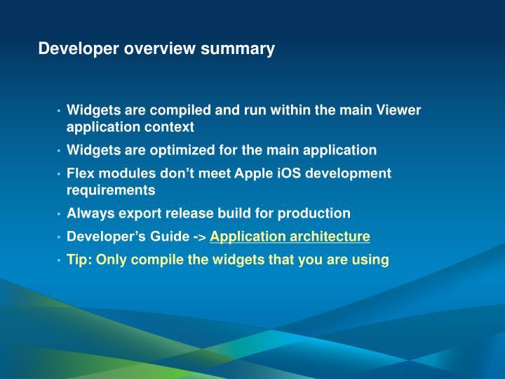 Developer overview summary