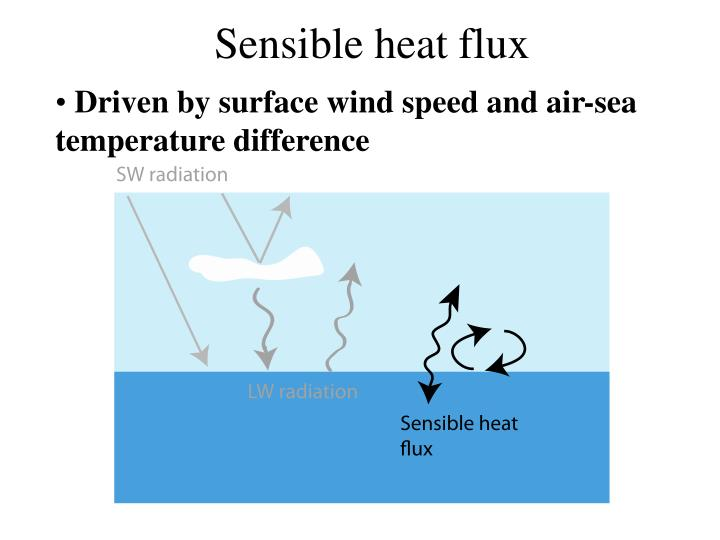Driven by surface wind speed and air-sea temperature difference