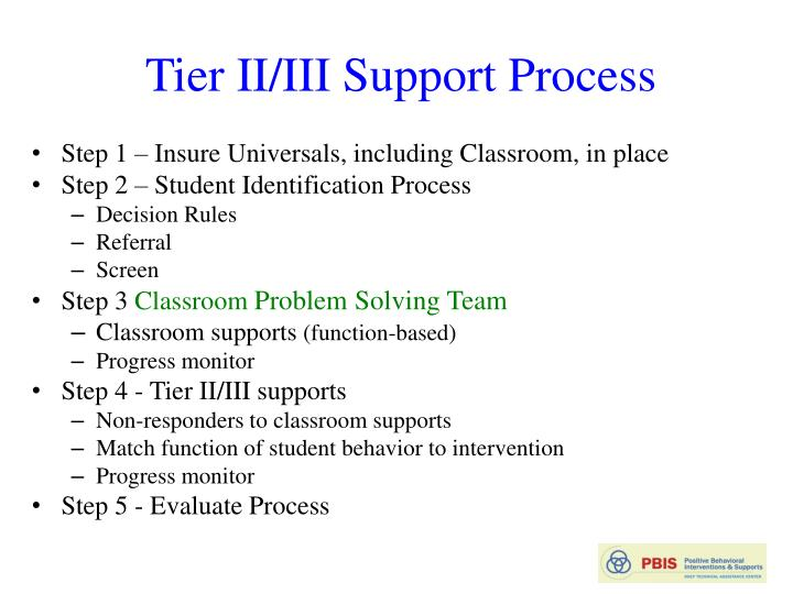 Tier II/III Support Process