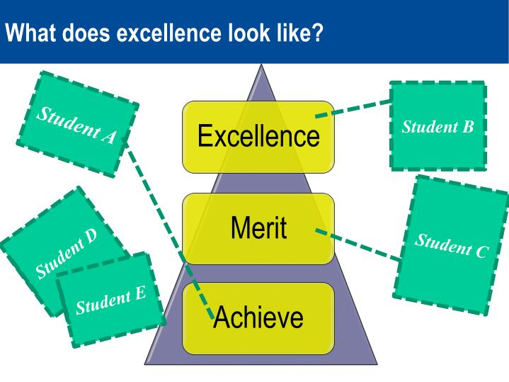 What does excellence look like?