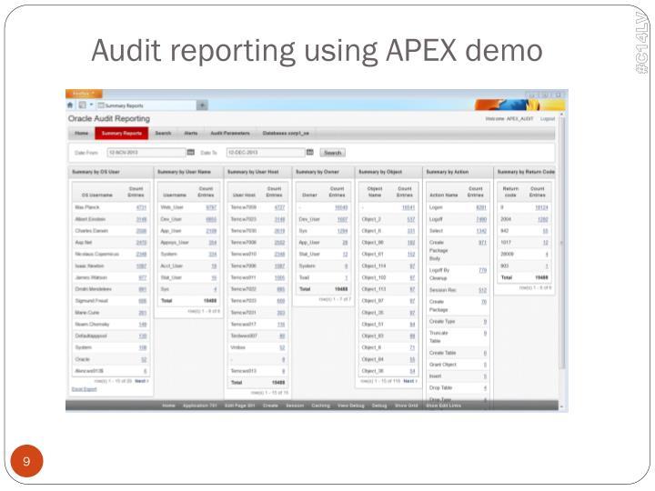 Audit reporting using APEX demo