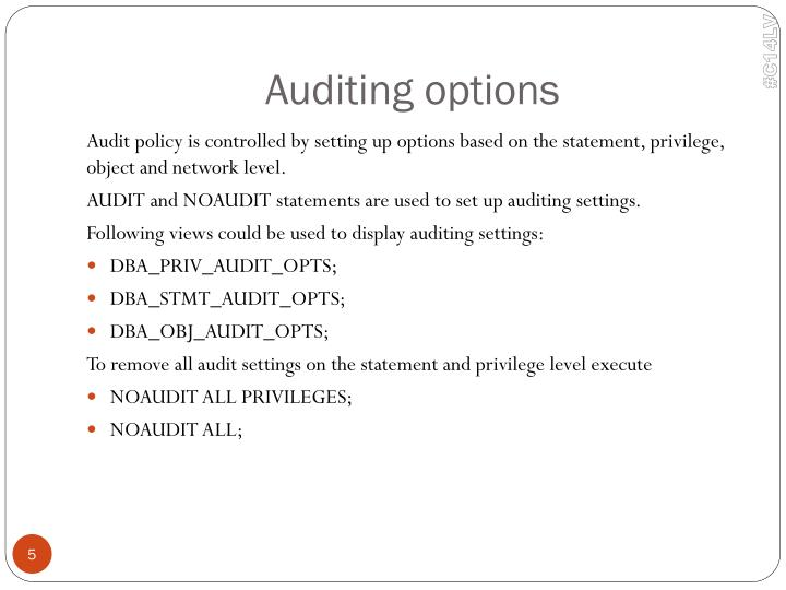 Auditing options