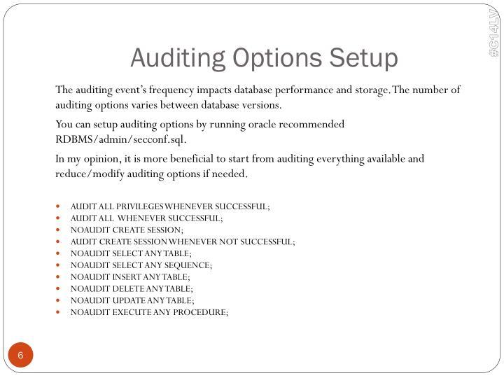 Auditing Options Setup