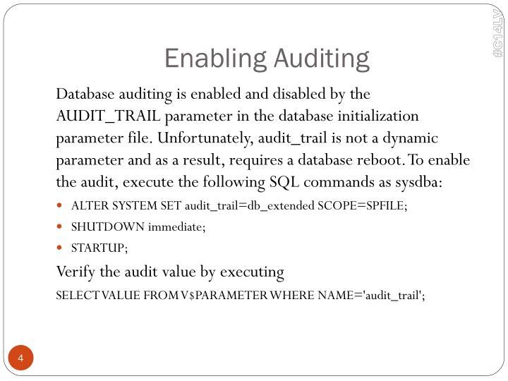 Enabling Auditing