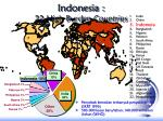 indonesia 22 high burden countries