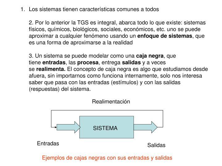 Los sistemas tienen características comunes a todos