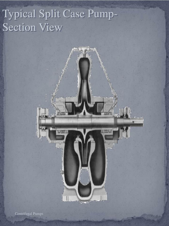 Typical Split Case Pump- Section View