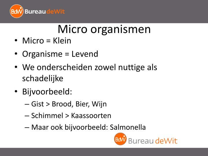 Micro organismen