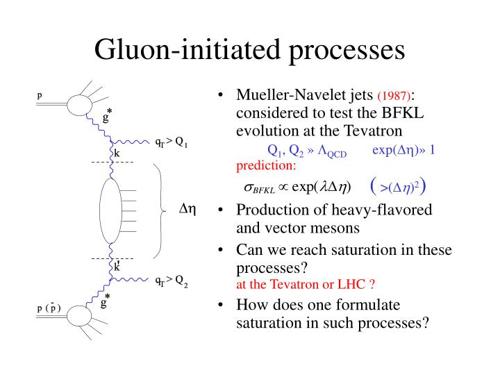 Gluon initiated processes