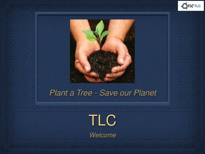 Plant a Tree - Save our Planet