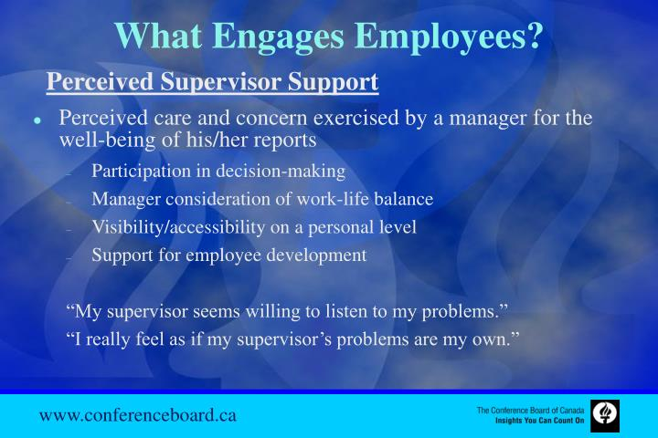 What Engages Employees?