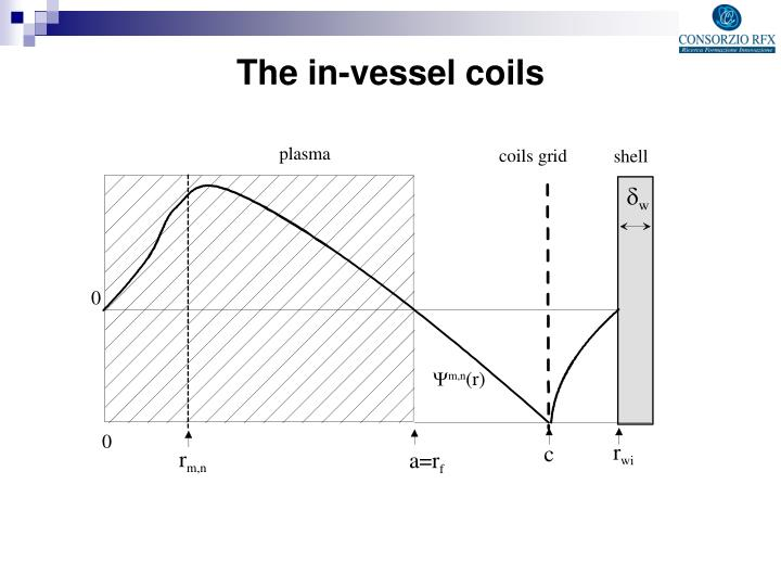 The in-vessel coils