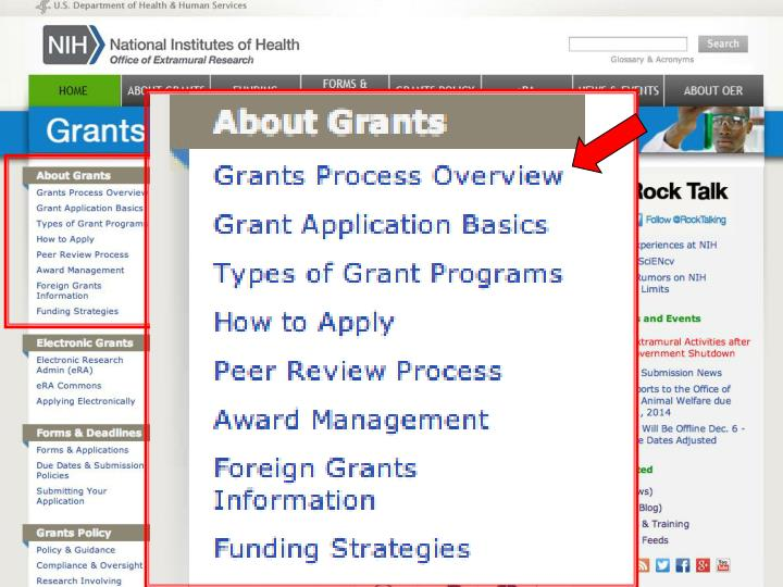 Check out grants process overview