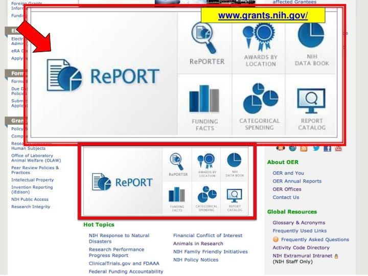 www.grants.nih.gov