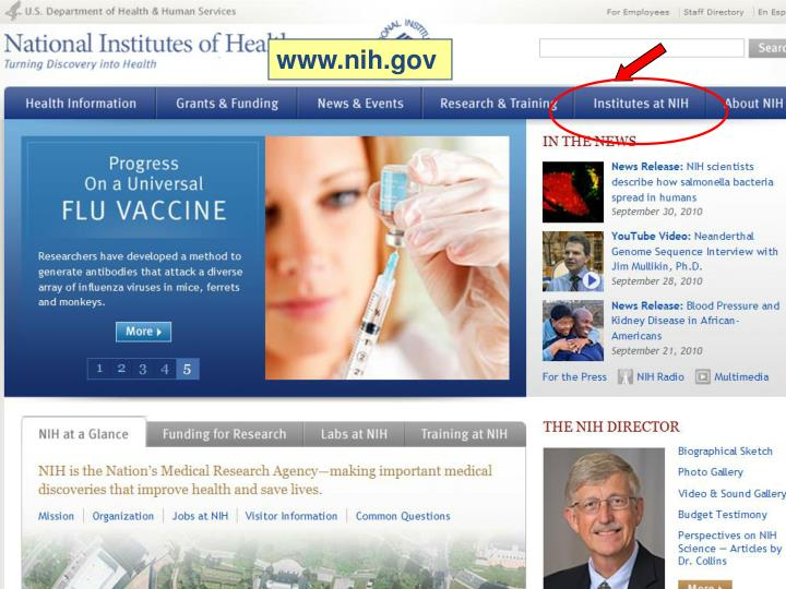 NIH Home page
