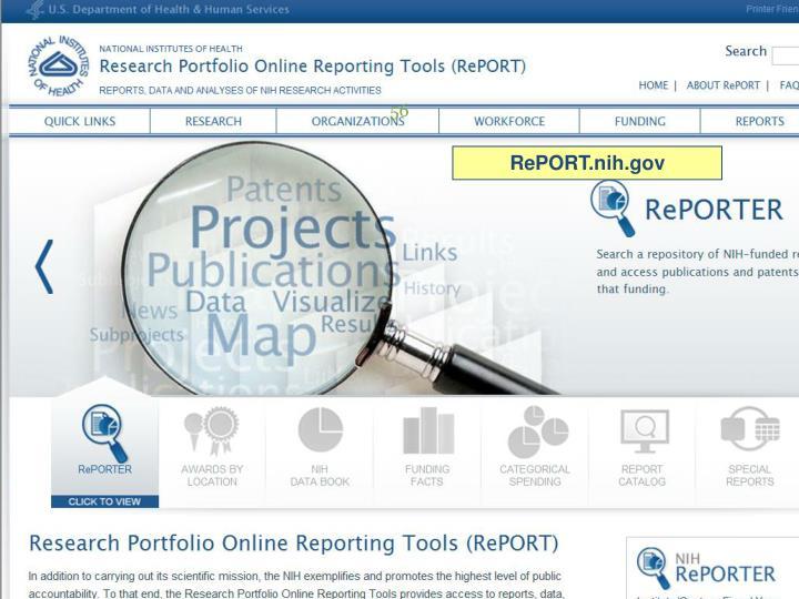 Report Website