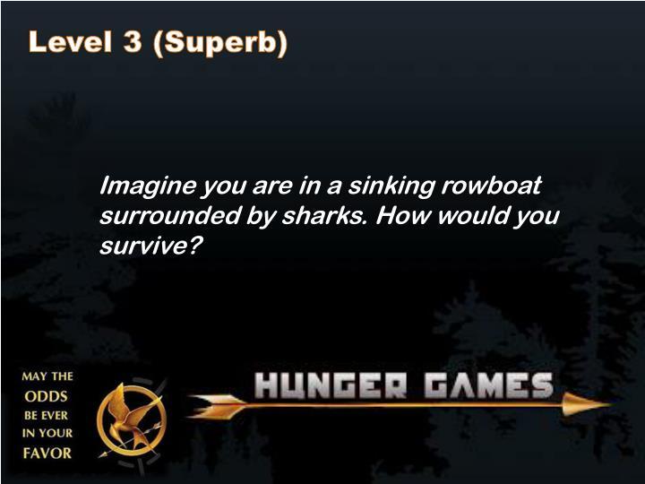 Level 3 (Superb)