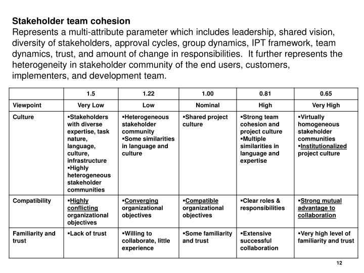 Stakeholder team cohesion