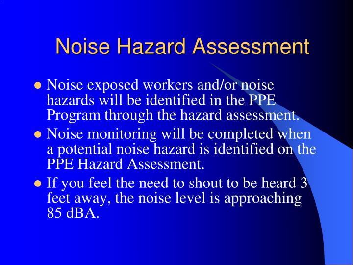 Noise Hazard Assessment