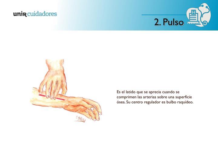 Es el latido que se aprecia cuando se comprimen las arterias sobre una superficie ósea. Su centro regulador es bulbo raquídeo.
