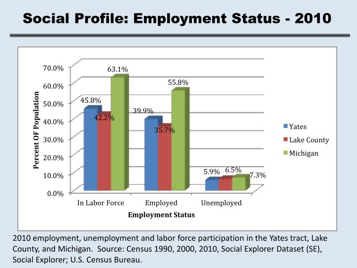 Social Profile: Employment Status - 2010