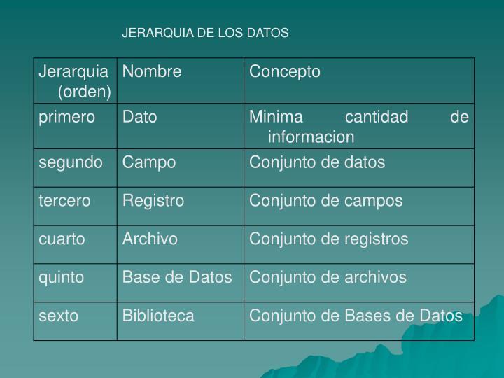 JERARQUIA DE LOS DATOS