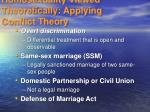 homosexuality viewed theoretically applying conflict theory