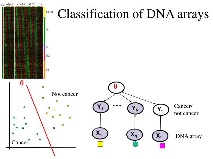 Classification of DNA arrays