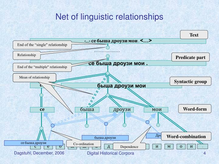 Net of linguistic relationships