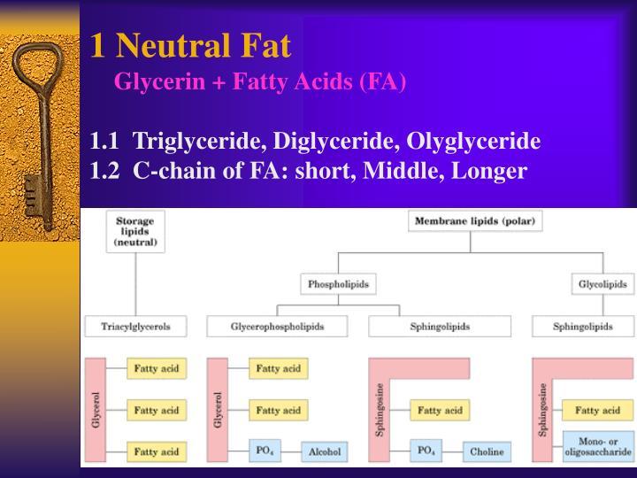 1 Neutral Fat