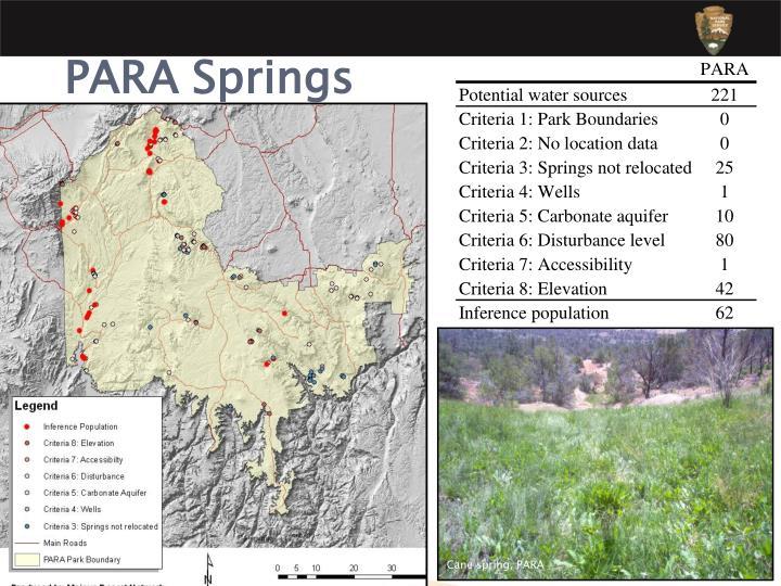 Cane spring, PARA