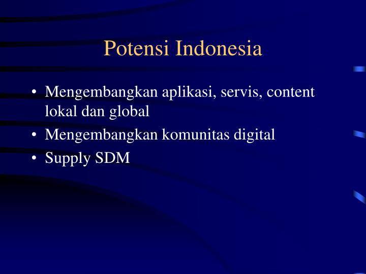 Potensi Indonesia
