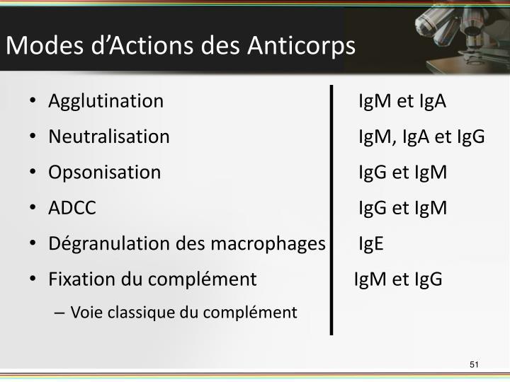 Modes d'Actions des Anticorps
